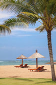 Güzel bir plaj — Stok fotoğraf