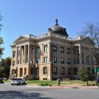 Georgetown Texas County Seat — Stock Photo #5334819