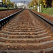 Rails — Stock Photo #4059769
