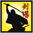 Martial art colored simbol. Vector. — Stock Photo