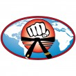 Martial art World Cup colored simbol. Vector. - Stock Photo