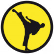 Martial art colored simbol. Vector. — Stock Photo #4242102