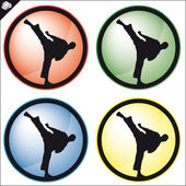 Arte marcial simbol conjunto de colores. Vector. — Foto de Stock