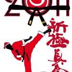 Karate shinkyokushinkai -Martial art in New Year .Fighter in red kimono — Stock Vector