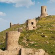 Ruins fortress — Stock Photo #4193023