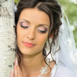 The bride and a birch — Stock Photo