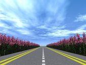 Highway flowers — Stock Photo
