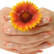 Female hand and flower — Stock Photo