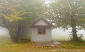 Small house in foggy forest — Stock Photo
