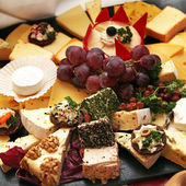 Different types of cheese — Stockfoto