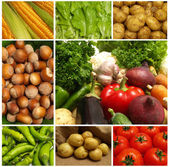 Vegetable collection isolated on a white background. — Stock Photo