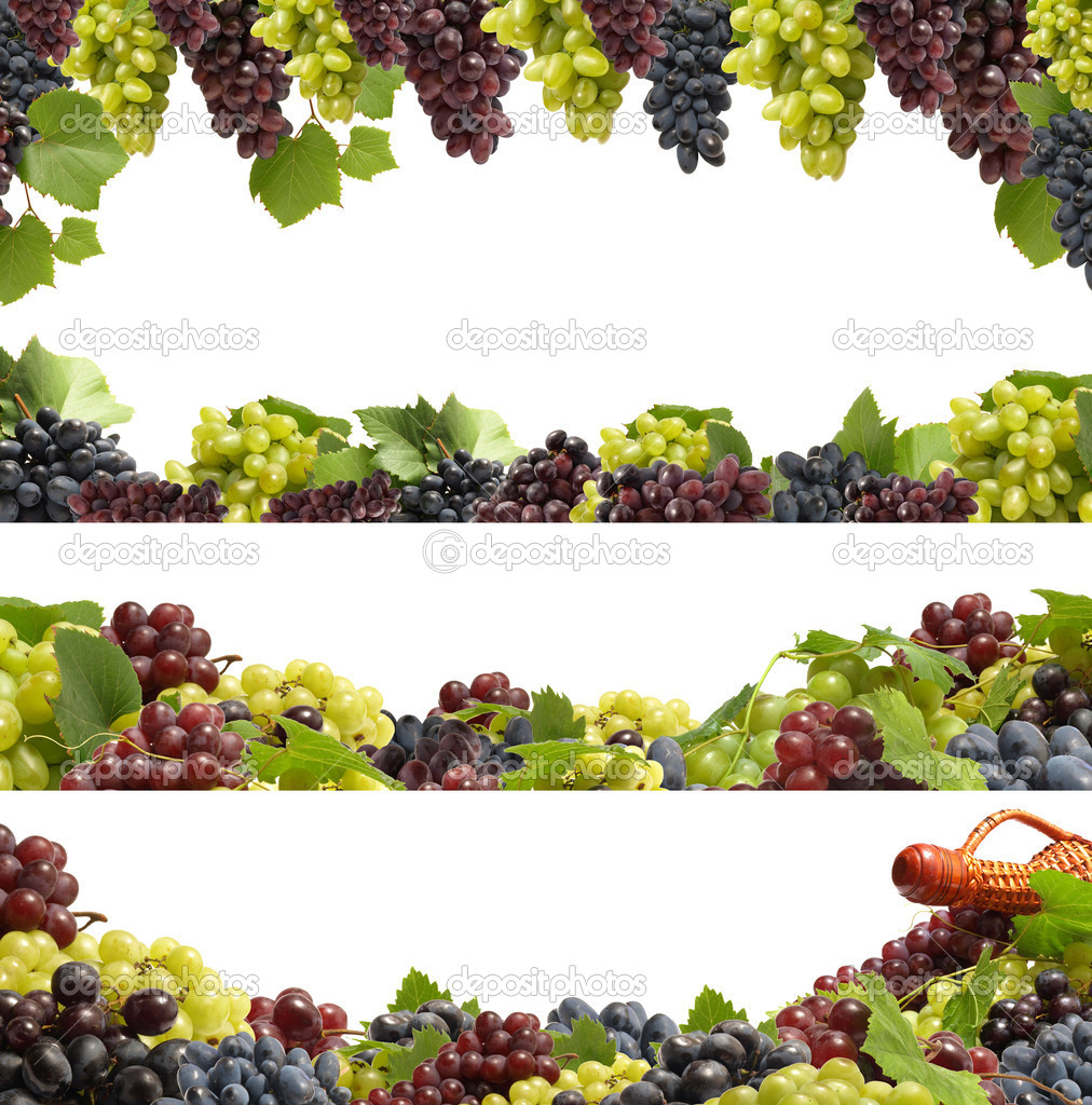 Set fresh grape fruits with green leaves isolated on white background — Stock Photo #5325644