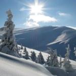 Постер, плакат: Beautiful day in the winter