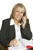 Freindly Businesswoman — Stockfoto