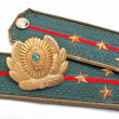 Cockarde and epaulets of the Soviet militia - Stock Photo