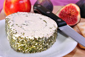 Herbed soft cheese on a white plate with knife — Stock Photo