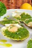 Some organic scallop and herbed butter on a plate — Stock Photo
