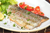 Grilled rainbow trout with organic tomato and parsley — Stock Photo