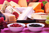 Cheese platter with some organic fresh cheese — Stock Photo