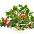 Christmas holly on white background — Stock Photo #4451220