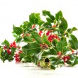 Christmas holly on white background — Stock Photo