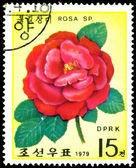 Postage stamp. The Flowerses of the red rose. — Stock Photo