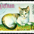 Vintage  postage stamp. House cat. 8. - Stock Photo