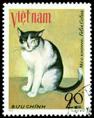 Vintage postage stamp. House cat. 1. — Fotografia Stock