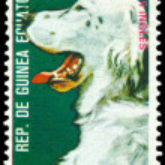 Vintage postage stamp. English Setter. — Stock Photo