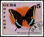 Vintage frimärke. papilio cayguanabus poey. — Stockfoto