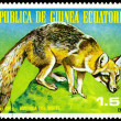 Royalty-Free Stock Photo: Vintage  postage stamp. Gray Fox.