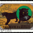 Stock Photo: Vintage postage stamp. Wild Cats. Black panthers.