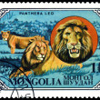 Stock Photo: Vintage postage stamp. Wild Cats. Lions.