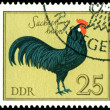 Vintage postage stamp. Saxonian Cock. — Stock Photo #5286936