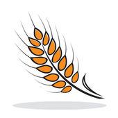Orange abstract wheat — Stock Vector