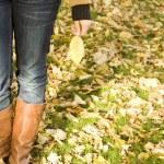 Holds an autumn leaf — Stock Photo