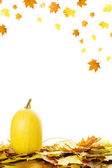 Pumpkins with fall leaves — Stockfoto