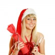 Celebrate Christmas? — Stock Photo #4163467