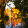 HDR image of a park in autumn — Stock Photo #4138391