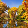 HDR image of a park in autumn — Stock Photo #4138434