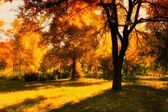 HDR image of a park in autumn — Stock Photo
