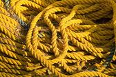 žluté lano — Stock fotografie