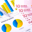 Financial Analysis  with charts and european currency — 图库照片