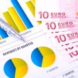 Financial Analysis  with charts and european currency — Foto de Stock