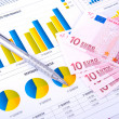Financial Analysis  with charts and european currency - Stockfoto