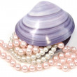 Seashell and pearls — Stock Photo