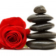 Red rose and spa black stones isolated on white background — Stock Photo