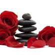 Flowers and spa black stones isolated on white — Stock Photo