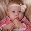 Stock Photo: Baby girl with flower headband