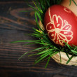 Red easter eggs — Stock Photo #5223776